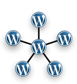 Image Path Fix for Timthumb and WordPress Multisite